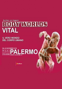 CULTURITALY SRL - Mostra Body Worlds